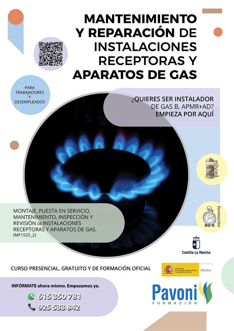 Curso Mantenimiento y Reparación Aparatos de Gas